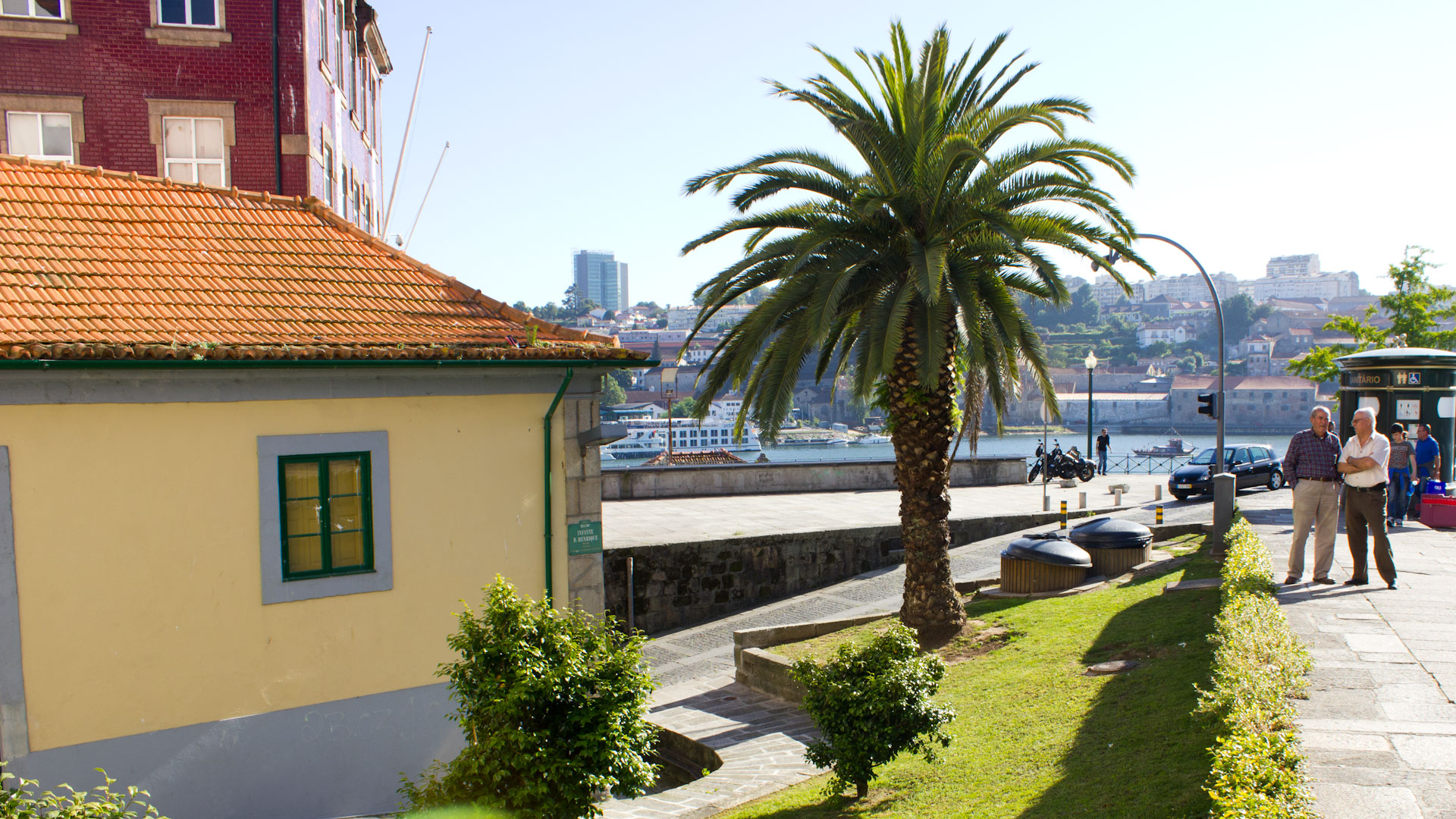 Palms and historical buildings in Portugal