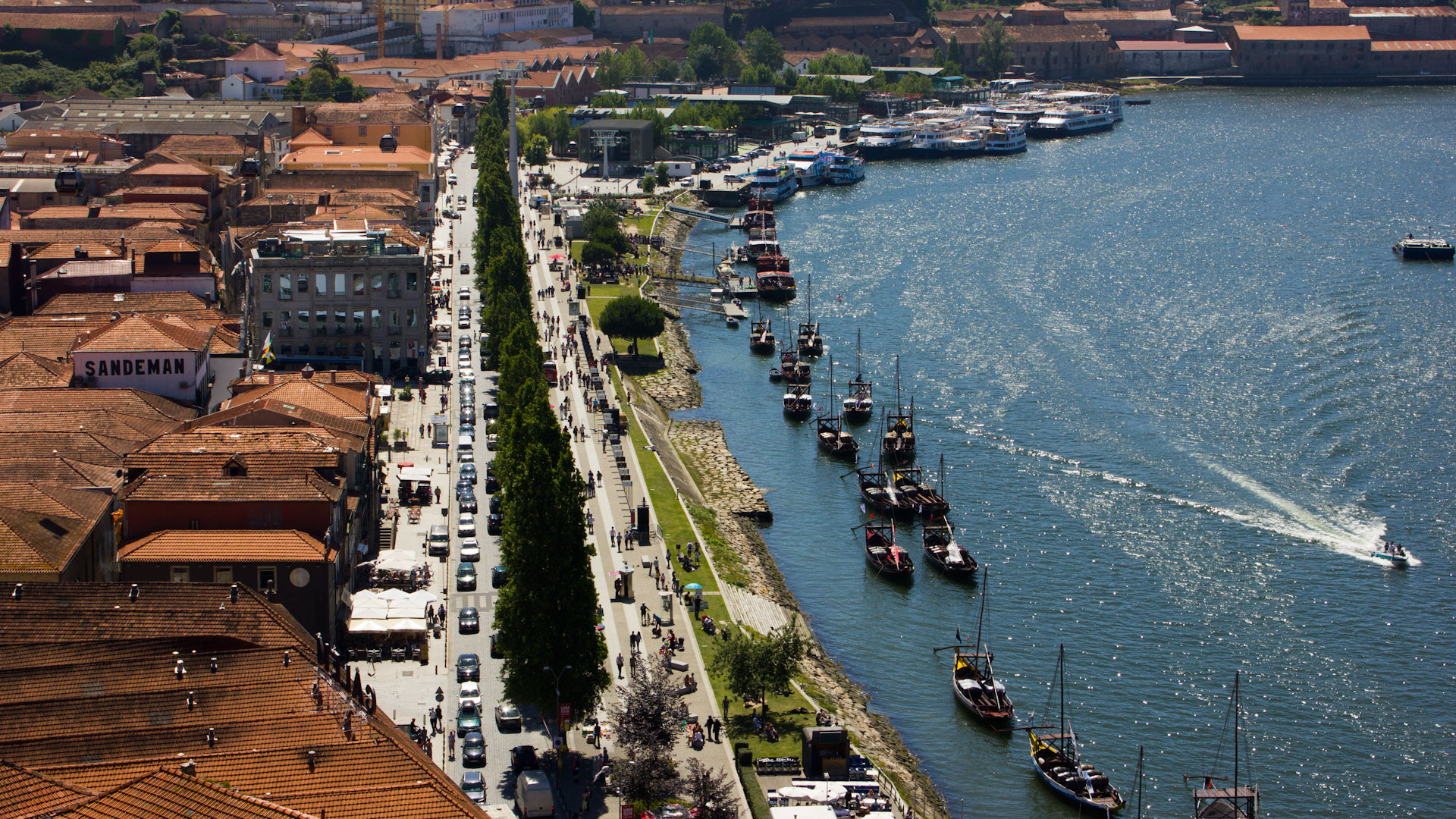 Sunny and market day in Porto