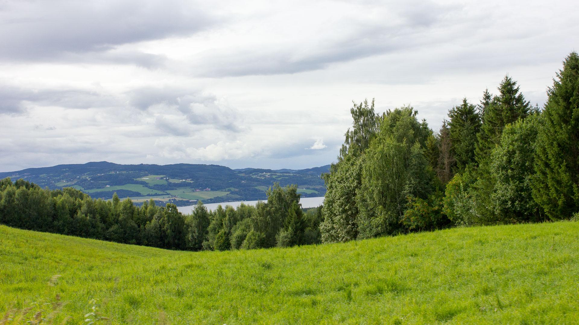 Norwegian fields