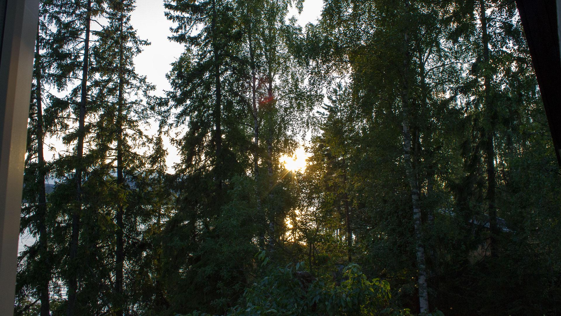 Evening in Norway